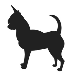 Chihuahua Black Silhouette vector image vector image