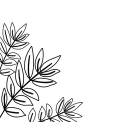 branches with leaves design vector image