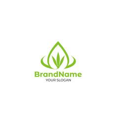 cbd oil logo design vector image