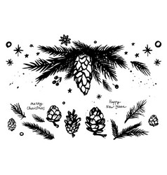 christmas fir branches andcones set vector image