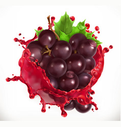 Red wine and grapes fresh fruit 3d icon vector