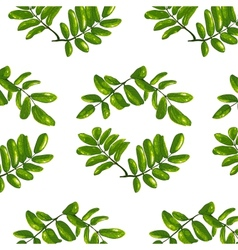 Rhombic Leaves Seamless Pattern vector image