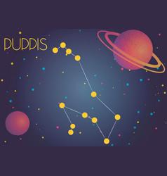 The constellation puppis vector