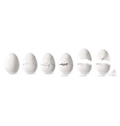white egg set vector image