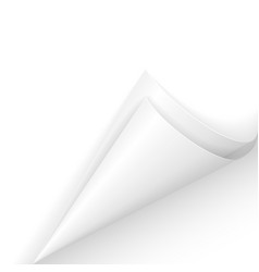 white paper corner on white background vector image