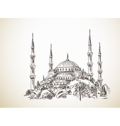 Blue Mosque vector image vector image
