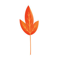 Autumn leave symbol with watercolor texture vector