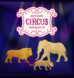 circus animals performance show announcement vector image