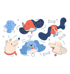 dogs heads in blue and orange colors vibrant vector image