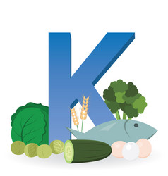Foods rich in vitamin k vector