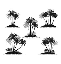 islands with palm trees silhouette vector image