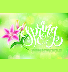 spring lettering with lily flower on a blur vector image vector image
