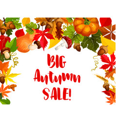 autumn season sale offer poster for retail design vector image vector image