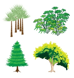 An Isometric Collection of Green Trees and Plants vector