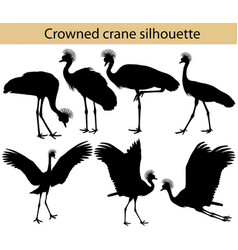 crowned crane silhouette vector image