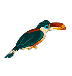 Curl-crested aracari icon vector