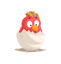 Cute red parrot baby hatching from the egg vector