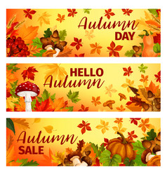 Hello autumn banner with fall leaf frame border vector