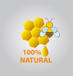 Honey and bee icon vector