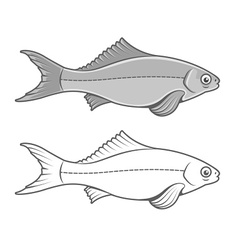 Silhouette of fish contour vector image