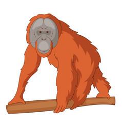 orangutan icon cartoon style vector image