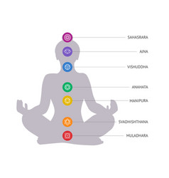 chakras concept woman silhouette in lotus vector image