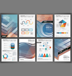 brochure template with charts and graphs vector image