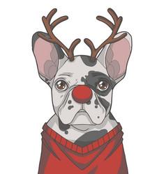 Christmas french bulldog vector