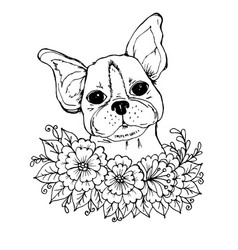 Doodle a face of a cute bulldog in the colors vector