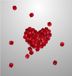 heart of red rose petals valentines card vector image