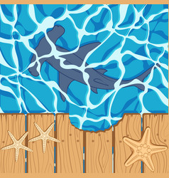 marine background with a shark hammer and starfish vector image