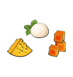 Sketch mozzarella cheddar emmental cheese vector