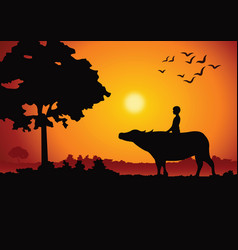 Sunset landscape and country life with a boy ride vector