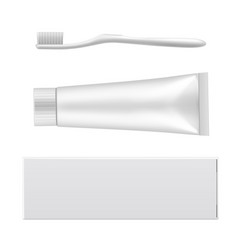 toothpaste empty mockup and dental toothbrush vector image