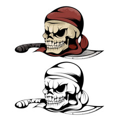 two skulls of pirate vector image