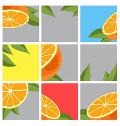 orange citrus fruit vector image vector image