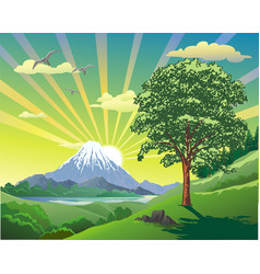 summer landscape the volcano at the lake the vector image