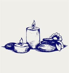 Basalt stones flower and candles vector image vector image