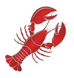 Boiled lobster on a white background vector image vector image