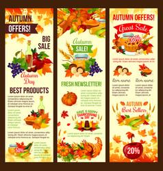 Autumn sale banner set of fall harvest celebration vector