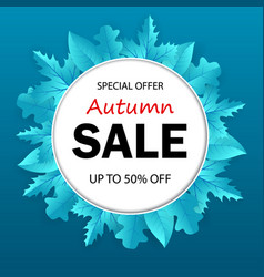 banner autumn sale with seasonal fall leaves vector image