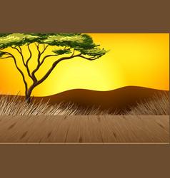 Empty savannah forest landscape scene with blur vector