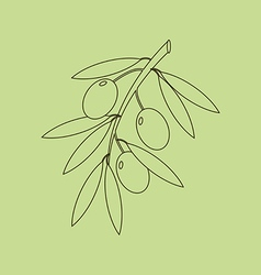 Olive branch icon vector