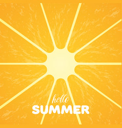 orange pulp and hello summer text vector image