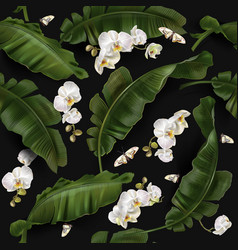 pattern with banana leaves and orchid vector image