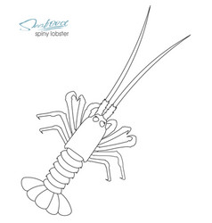 Silhouette spiny lobster linear silhouette spiny vector