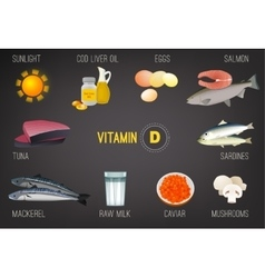 Vitamin D in Food vector