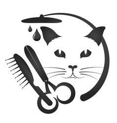 grooming cats and other animals vector image