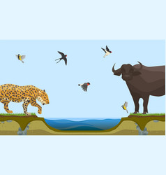 african animals at water place at savanna vector image