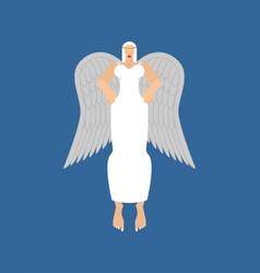 Beautiful angel woman fine female archangel vector